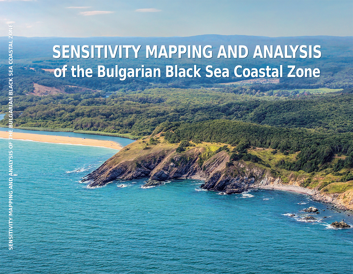 SENSITIVITY MAPPING AND ANALYSIS